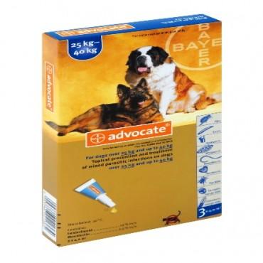 ADVOCATE DOG 25-40 KG PIP.