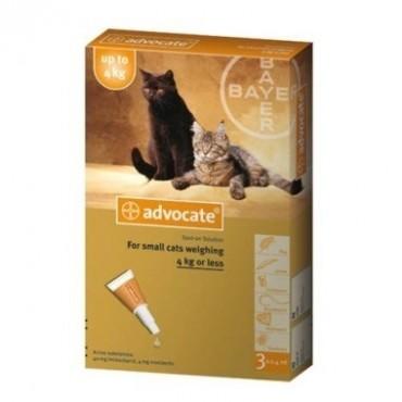 ADVOCATE CAT