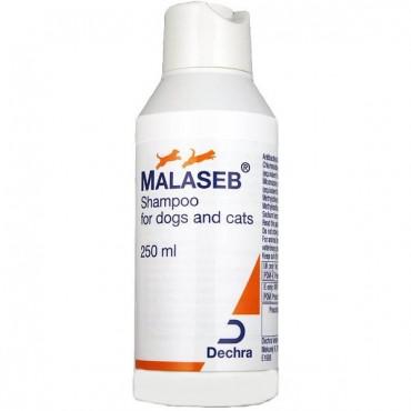 MALASEB SAMPON