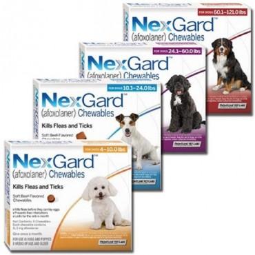 NEXGARD 2-4KG CP.