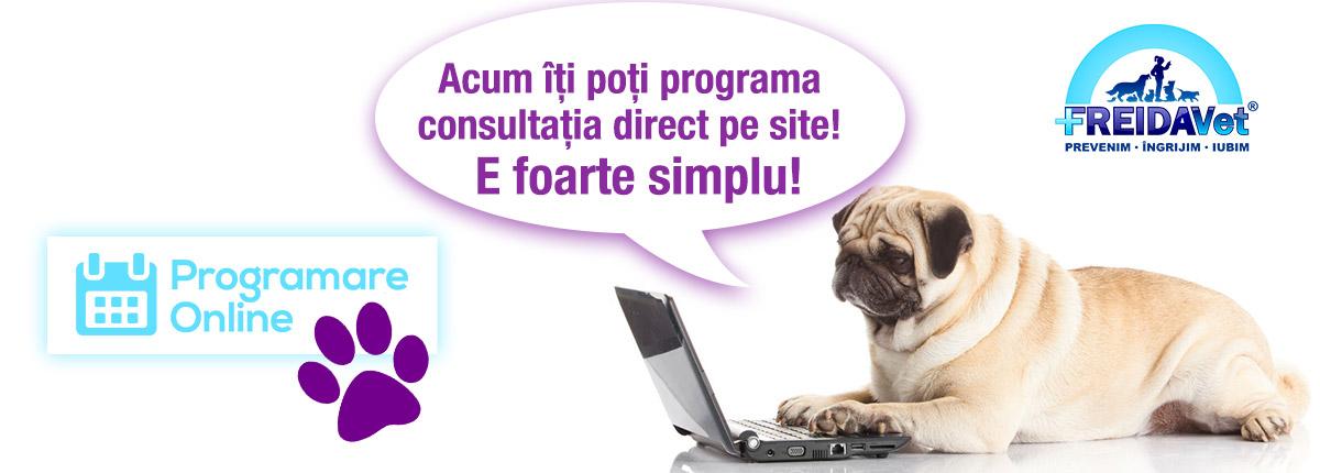 Programare online